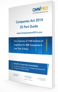 Companies Act Guide 3D Cropped